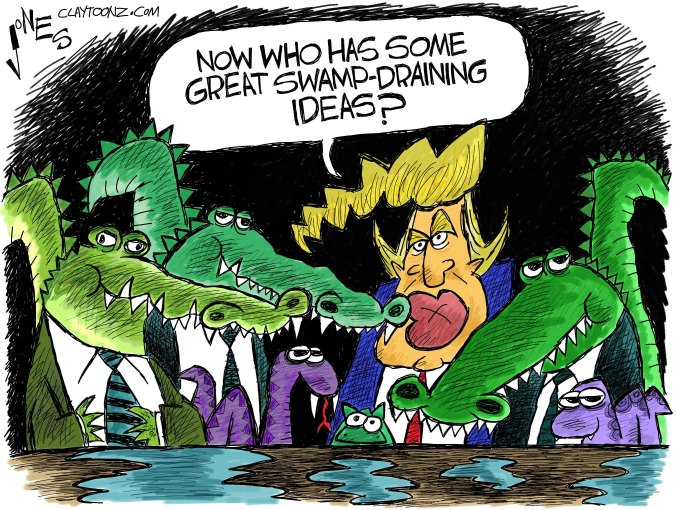 Image result for the swamp