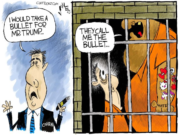 Image result for cartoons of trump and cohen
